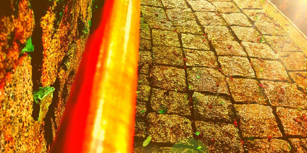 Notas do Caminho – Meu Caminhar com Siddhartha