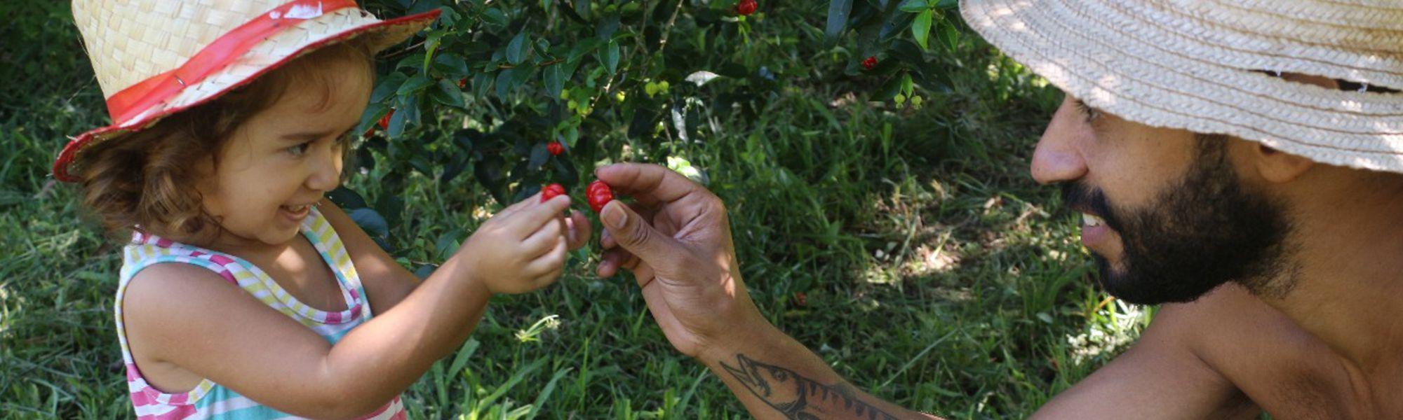 Meditação e Sistema de Cultivo Agroflorestal